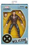 Preorder Hasbro X-Men Marvel Legends Series Action Figure 2020 Wolverine 15 cm
